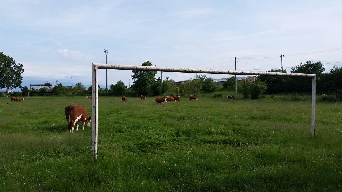 FOTO – Sibiu sat frumos: Cea mai mare pășune din Sibiu ar putea fi stadion de fotbal