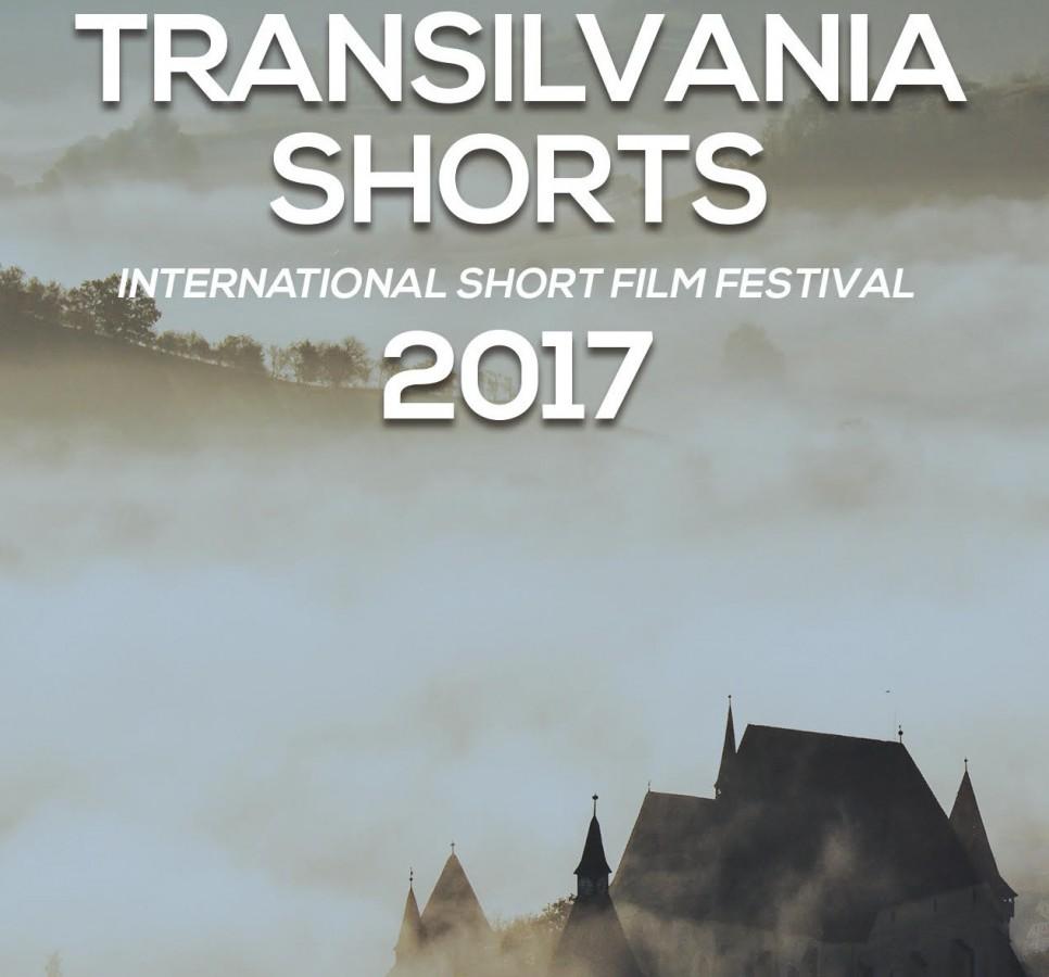 """Festivalul Internațional de Scurtmetraje de la Sibiu. """"Filmele selectate sunt promovate"""""""