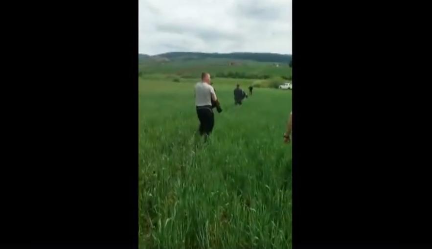 VIDEO. O ursoaică agitată, ajutată de jandarmi să-şi găsească puii pierduţi