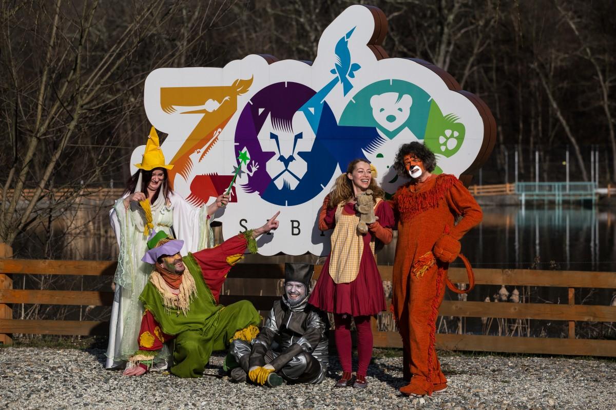 Zoo Sibiu, El Dorado-ul micilor afaceriști: chirii de aproape 200 de euro pe metru pătrat