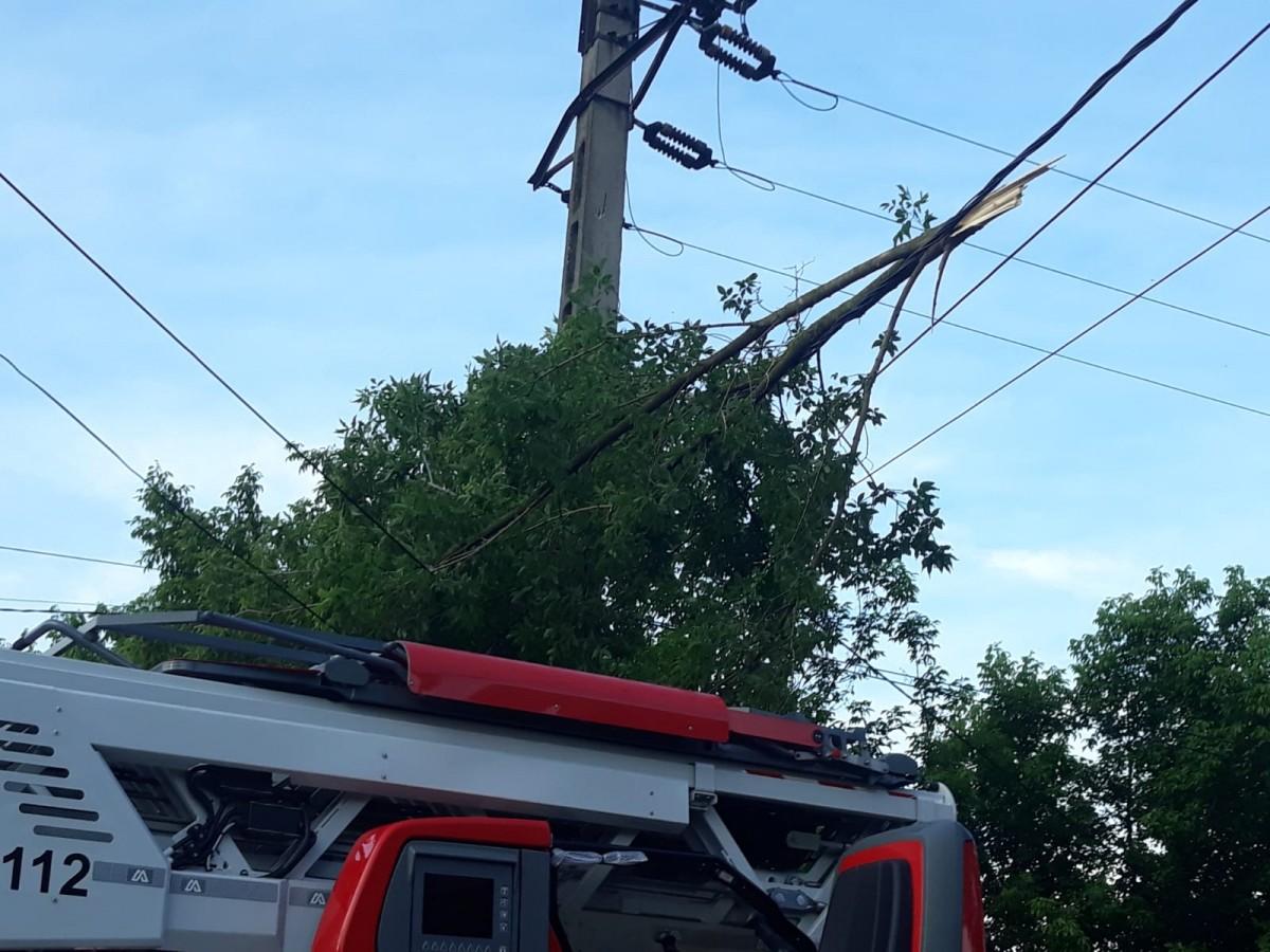 Brad de nouă metri în pericol de cădere, înlăturat de pompierii sibieni