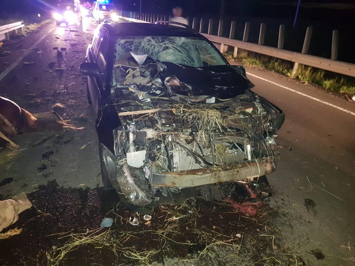 Accident teribil din cauza unui căruțaș inconștient: Doi copii sunt grav răniți