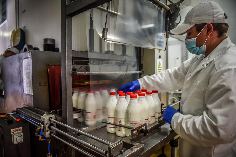 Am fost în fabrică să văd cum se produce iaurtul la marginea Sibiului