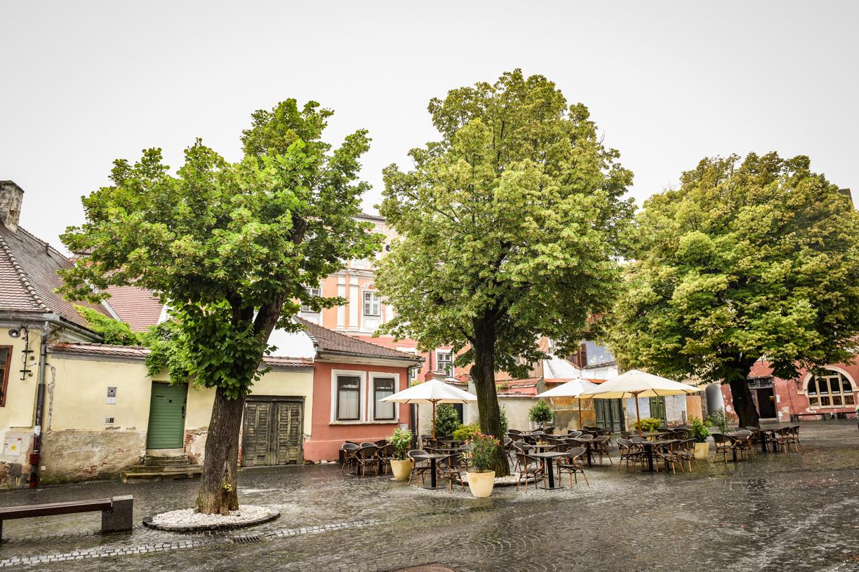 Se întorc ploile. Cod galben în tot județul Sibiu