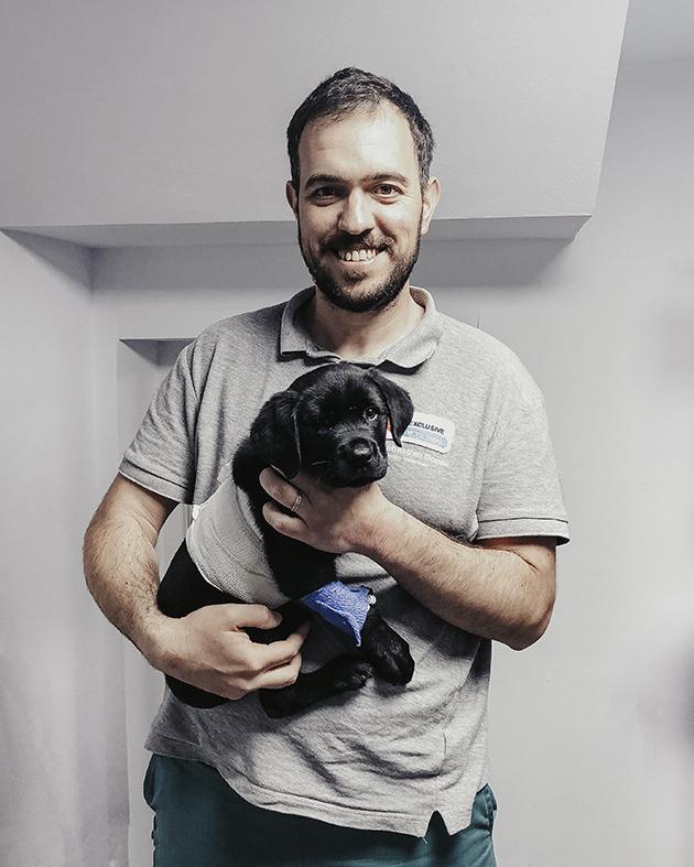 """Inimă de câine: Cum destinul și un veterinar din Sibiu au complotat pentru un """"până la adânci bătrâneți"""" ca-n filme. Povestea de dragoste dintre Bonnie și Clyde"""