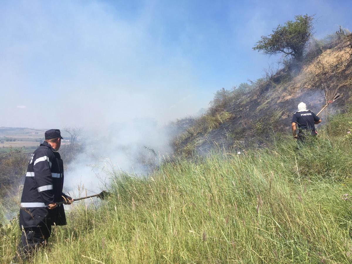 Pompierii sibieni au încercat o oră să stingă un incendiu de vegetație, în Gușterița – FOTO