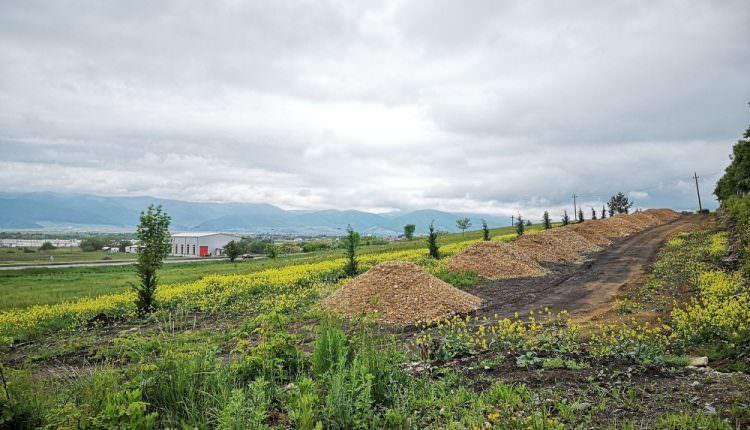 Transavia se opune ridicării unui cartier la Cristian, Sibiu. Primăria vrea să permită construcția în zona de protecție a fermei