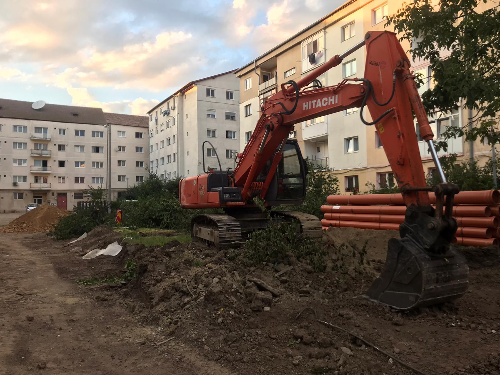 """Revoluția Verde din cartierul Ștrand: """"Au scos castanii și au plantat asfalt"""""""