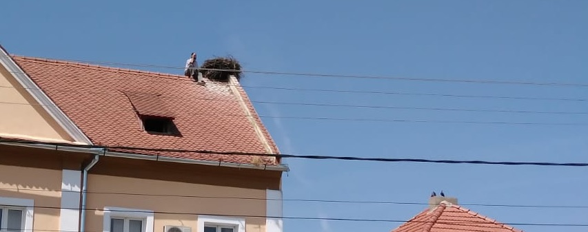 Un bărbat a amenințat că se aruncă de pe sediul primăriei din Nocrich. L-a lăsat nevasta singur, cu nouă copii