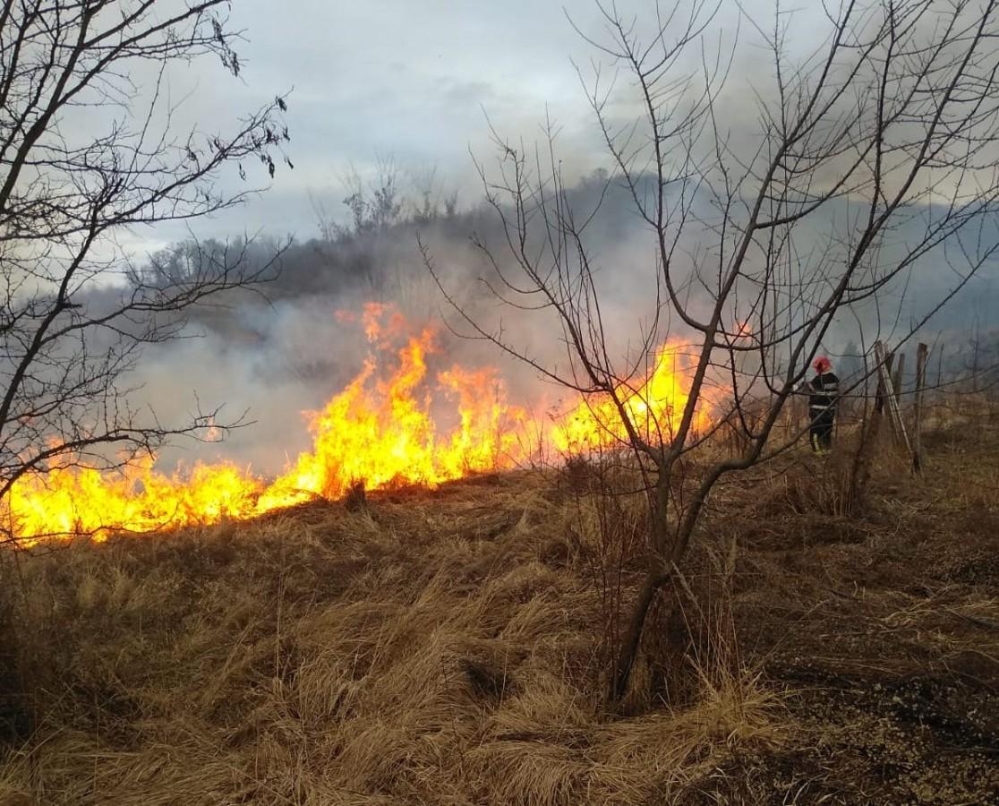 Actualizare Incendiu de vegetație uscată pe dealul Gușteriței. Au ars peste 35 de hectare