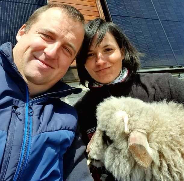 Doi sibieni au deschis o afacere inedită: Fac îngrășământ pentru legume din lână de oaie