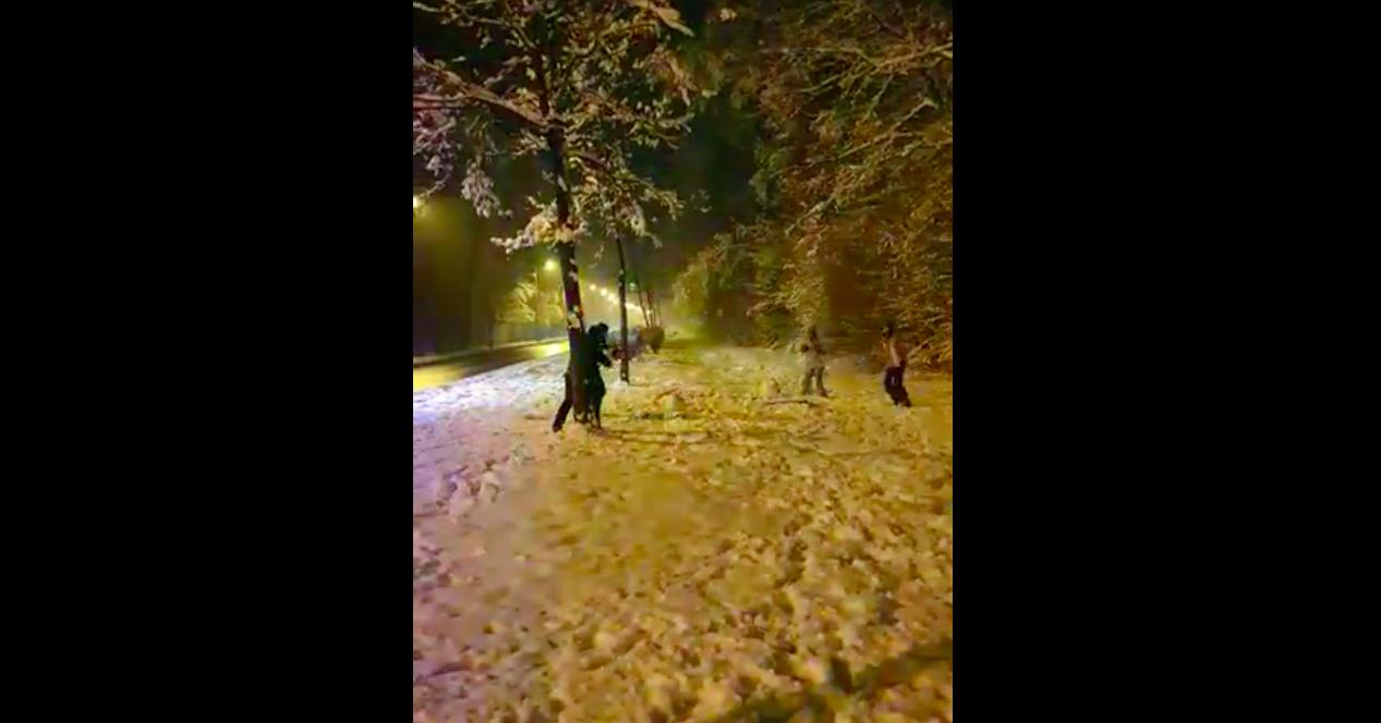 Viral: Doi polițiști sibieni s-au bătut cu zăpadă, cu doi tineri, pe Dumbrăvii