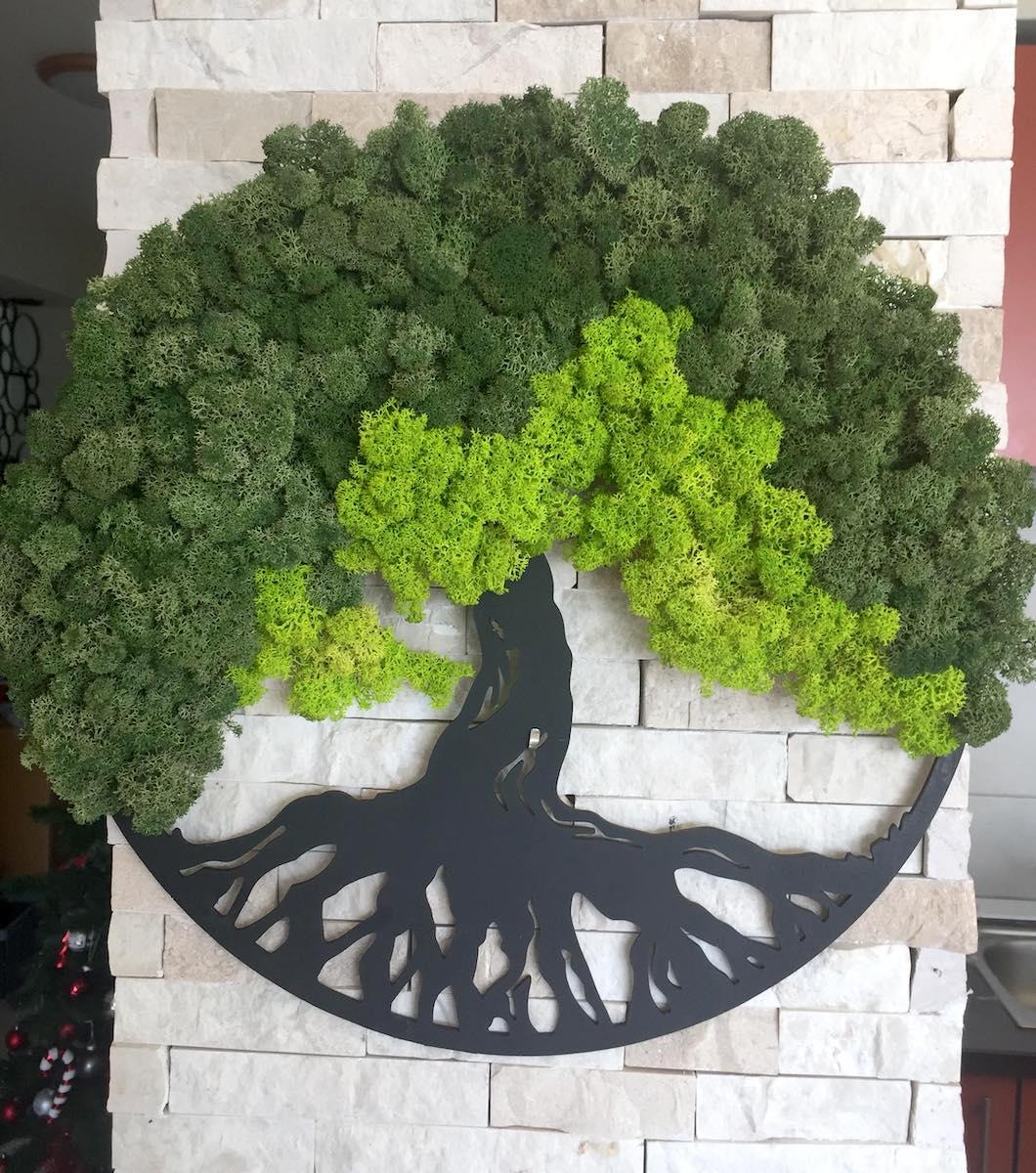 """O sibiancă realizează ornamente cu licheni: """"Ai o mică parte din natură în casă"""""""
