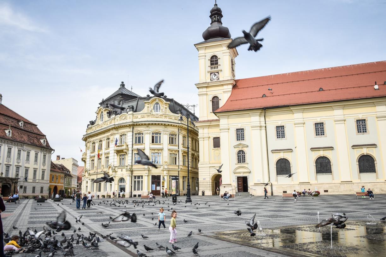 2,33 - incidența în municipiul Sibiu continuă să crească. Aproape 400 de cazuri noi, în ultimele 14 zile