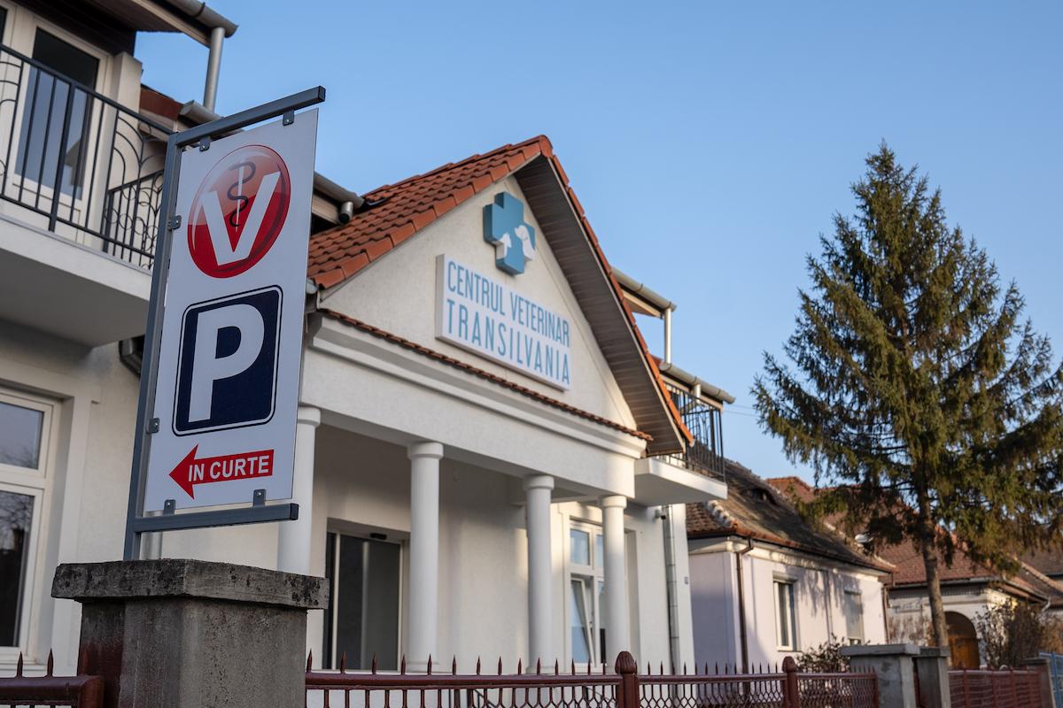 """Un cuplu din Sibiu a renunțat la Germania pentru România și a deschis cea mai modernă clinică veterinară din oraș. """"Mereu am știut că o să ne întoarcem în țară"""""""