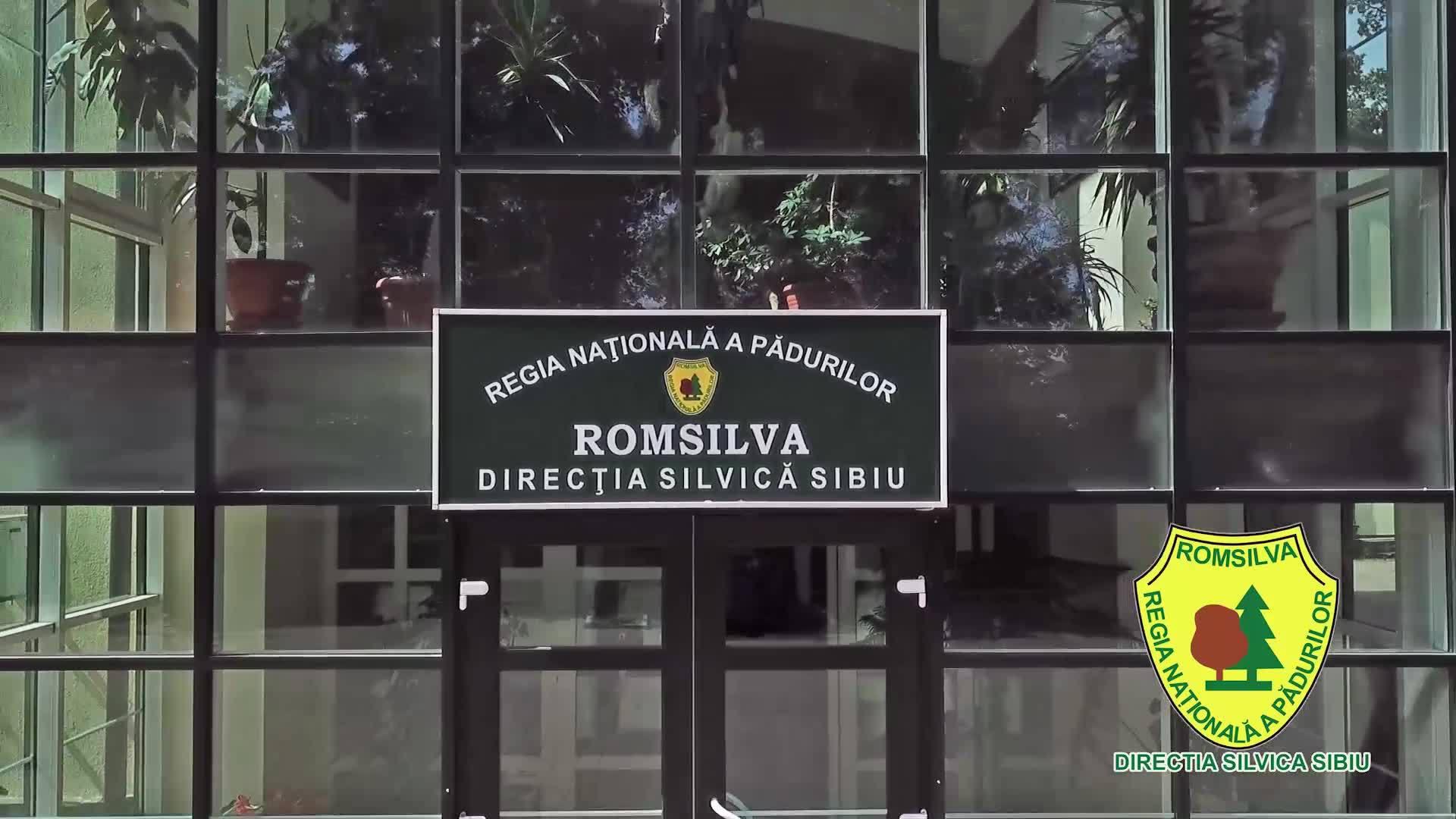"""""""Luna plantării arborilor"""" la Direcția Silvică Sibiu"""