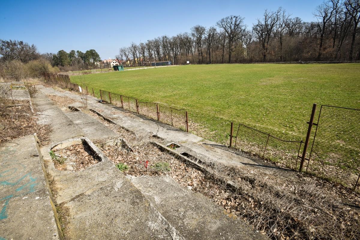 O nouă bază sportivă în Sibiu, pe terenul actualului teren de rugby din Valea Aurie