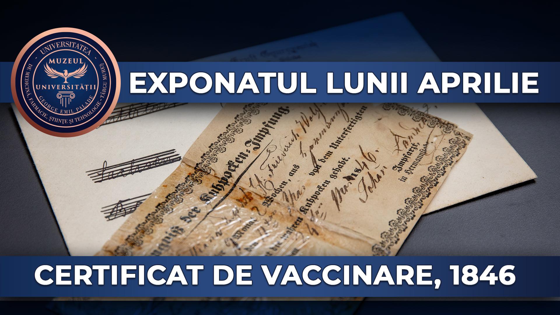 Certificat de vaccinare împotriva variolei eliberat la Sibiu în anul 1846, expus la Târgu Mureş