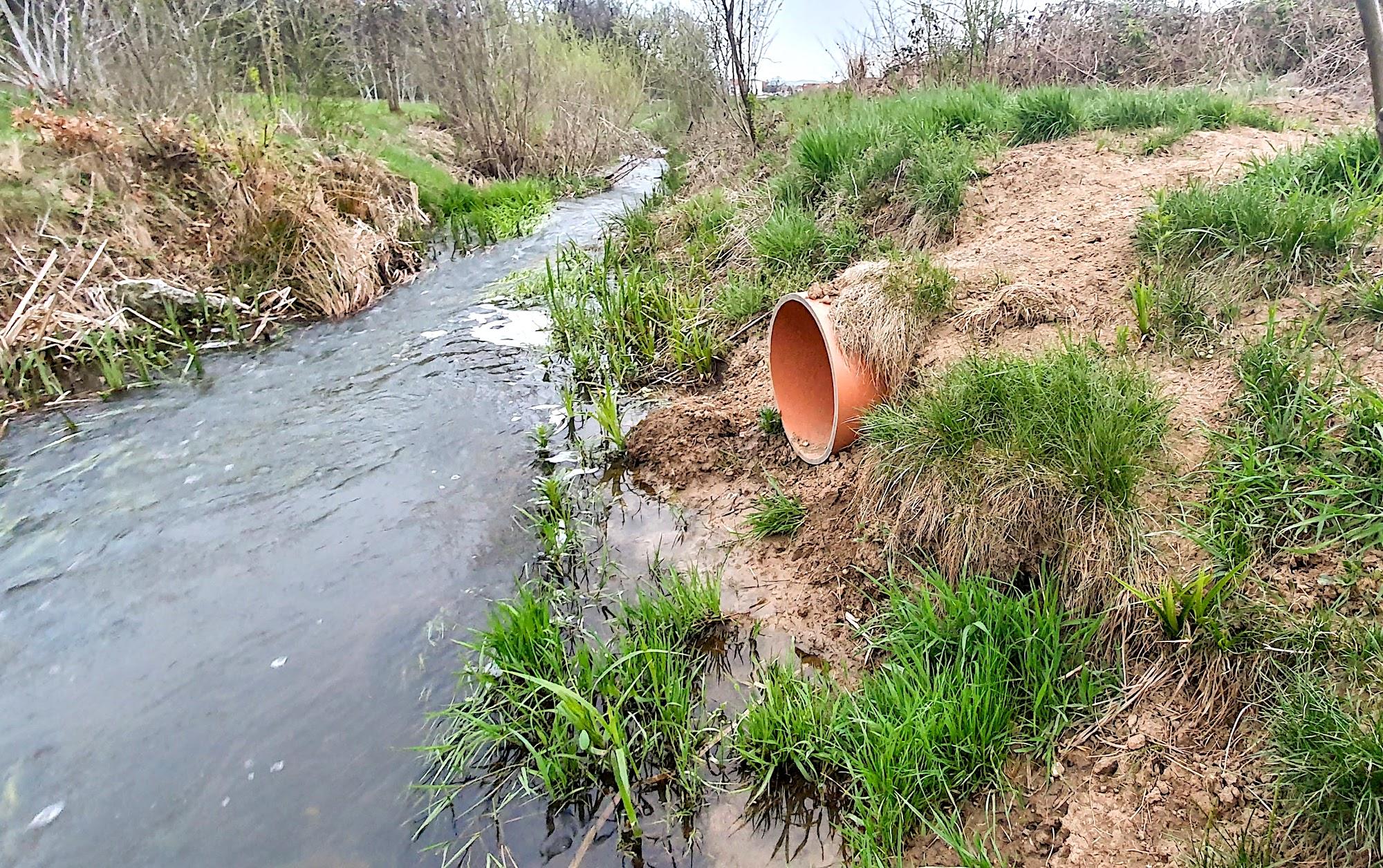 Pe pajiștea Sub Arinilor refula canalizarea. Apă Canal a intervenit: mizeriile sunt deversate acum direct în Trinkbach