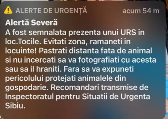 Mesaj RO-ALERT: Urs observat în zona locuită din Tocile