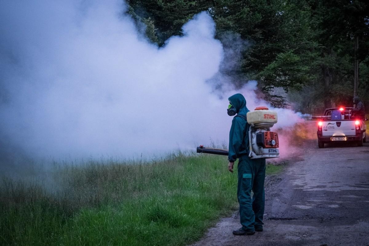 Azi și mâine: Primăria anunță prima dezinsecție împotriva țânțarilor și căpușelor