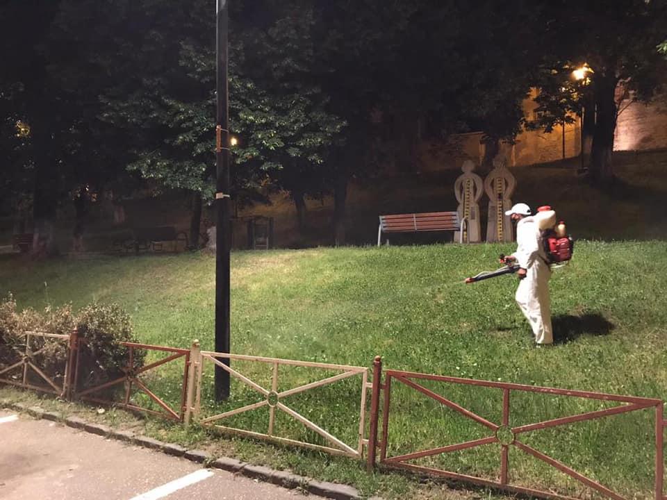 Acțiuni de dezinsecție a spațiilor verzi în Mediaș