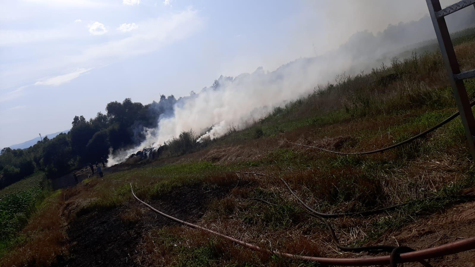 Incediu pe un câmp din Mohu. Focul a distrus două tone de baloți de plante furajere